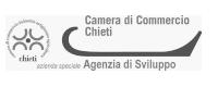 Logo Agenzia di Sviluppo Camera Commercio Chieti Pescara